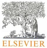 Elsevier launches afree online training platform for researchers