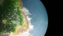 Fot. 7. Saintpoulia ionantha. Mikropropagacja fiołka afrykańskiego. Mikroskop świetlny