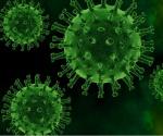 Wydawcy udostępniają dane badawcze iustalenia dotyczące epidemii koronawirusa