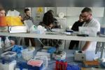 Festiwal Nauki iSztuki 2019 wInstytucie Farmakologii